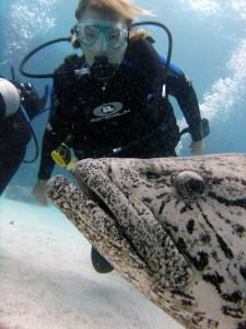 Maureen P. Price scuba diving at Cod Hole, Lizard Island