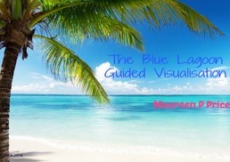 guided-visualisation